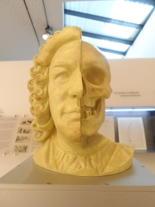 An accurate representation of Bach's face has been created using his skull
