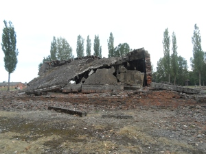 Gas chambers and crematoria were destroyed before German retreat